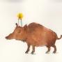 069wildschwein