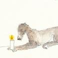 077deerhound1