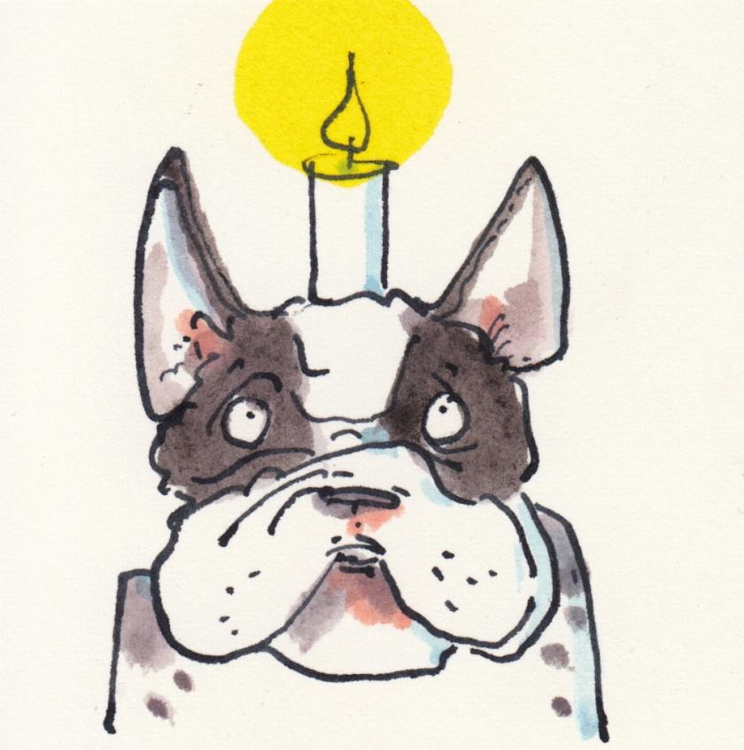 131bulldogge