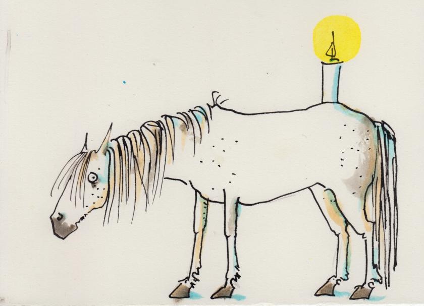 229camarguepferd