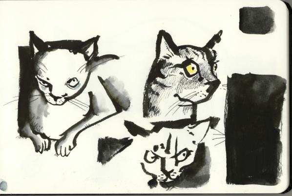 Katz1