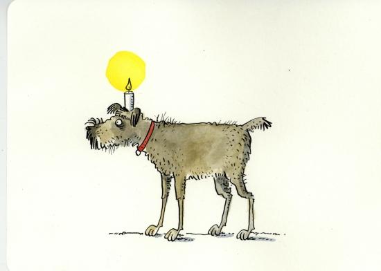 323Srassenhund